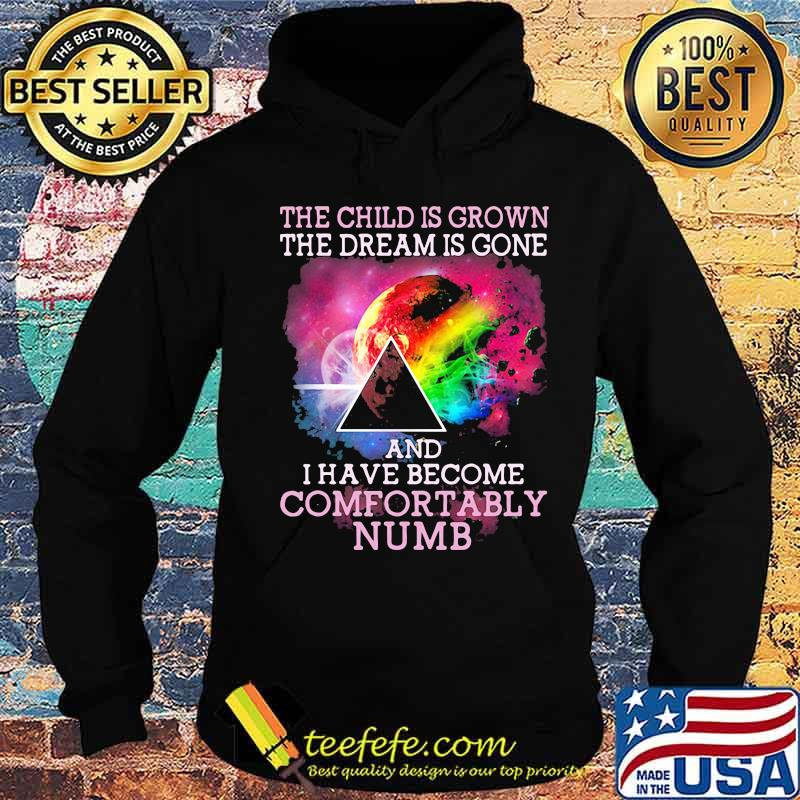 The Child Is Grown The Dream Is Gone I Have Become Comfortably Numb Pink Floyd Moon Lgbt Shirt Hoodie