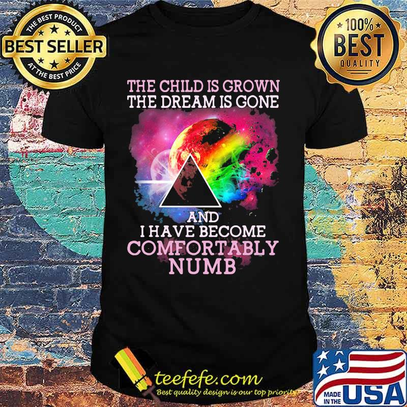 The Child Is Grown The Dream Is Gone I Have Become Comfortably Numb Pink Floyd Moon Lgbt Shirt